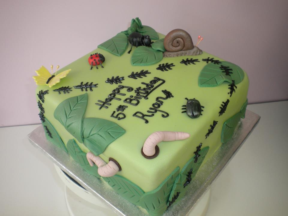 Birthday Cake Designs in Caton and Lancaster The Crazy Cake Company